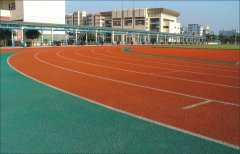 广州番禺星海中学塑胶跑道